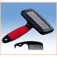 Brosse Carde (pm)