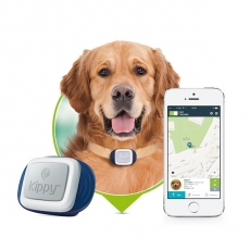 Tracker GPS chien Chat Kippy